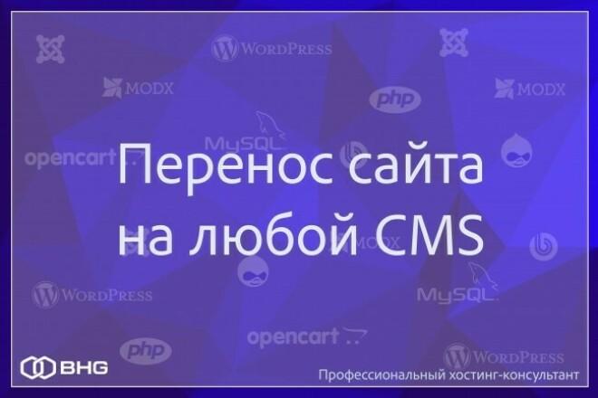 Перенос сайта на любой CMS 1 - kwork.ru