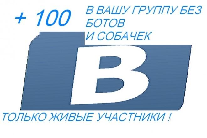 + 100 живых участников в группу вк 1 - kwork.ru