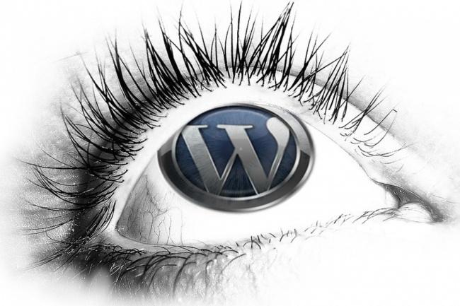 Переведу один шаблон WordPress, либо один плагин на WordPress 1 - kwork.ru