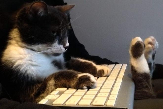 Профессиональная редакторская правкаРедактирование и корректура<br>Я - дипломированный специалист в области Лингвистика, с удовольствием возьму в работу Ваш заказ. - произведу глубокую вычитку материала на момент единообразия терминов, стиля; - осуществлю редакторскую и корректорскую правку, в соответствии с ТЗ и языковыми нормами; - постоянно поддерживаю связь с заказчиком в ходе выполнения работы.<br>