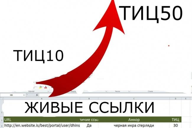 Размещение 100 вечных ссылок на трастовых сайтах с ТИЦ от 50 до 300 1 - kwork.ru