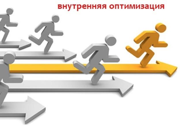 Сделаю грамотную внутреннюю оптимизацию сайта, работа без компромиссов 1 - kwork.ru