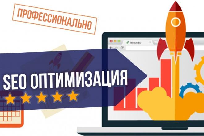 Профессиональная внутренняя SEO оптимизация БОНУС-Аудит 1 - kwork.ru
