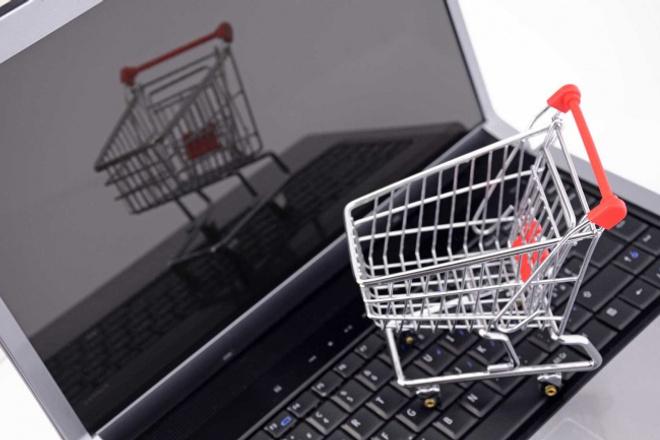 сделаю интернет-магазин брендовой одежды по системе дропшип с рекламой директа 1 - kwork.ru