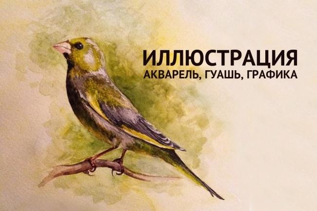Иллюстрация - акварель, гуашь, графика 1 - kwork.ru