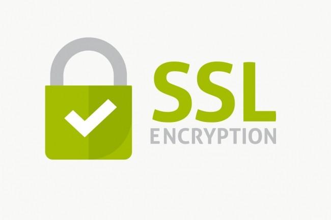 Настрою ssl-сертификат и хостинг 1 - kwork.ru