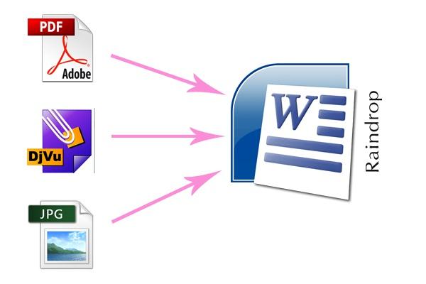 Распознаю и переконвертирую текст из PDF, DjVu, JPG файла и переведу в WORD 1 - kwork.ru
