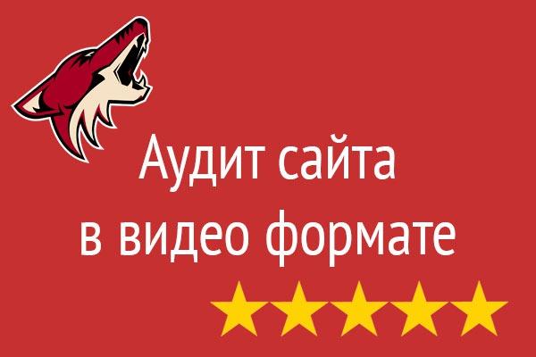 Видео аудит вашего сайта 1 - kwork.ru