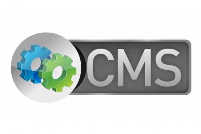доработаю сайт на любой cms 1 - kwork.ru