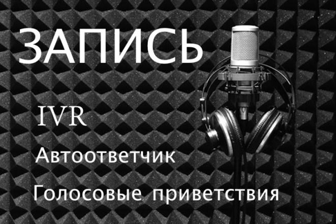 Запишу IVR, телефонное приветствие 1 - kwork.ru