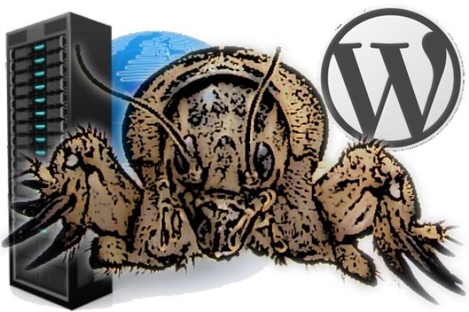 WordPress. Создание сайта 1 - kwork.ru
