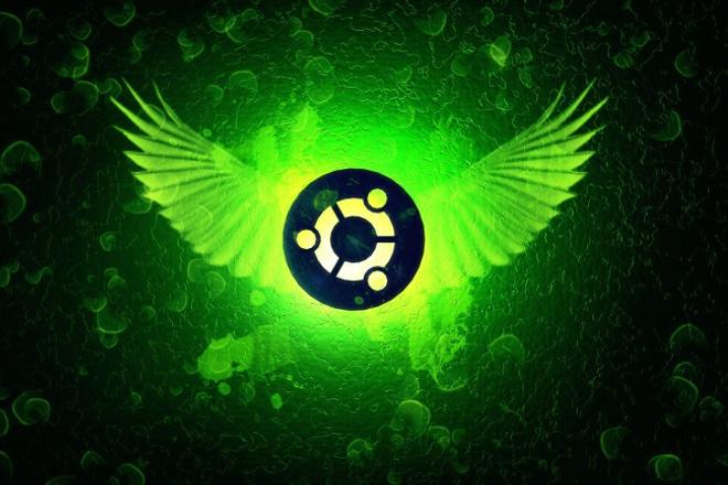 устрою демонстрацию установки Windows или Linux системы 1 - kwork.ru