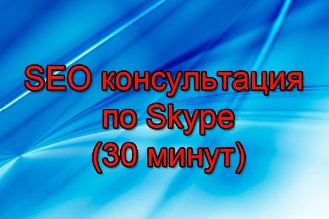 Проведу SEO-консультацию по SKYPE (30 мин). Отвечу на любые вопросы 1 - kwork.ru