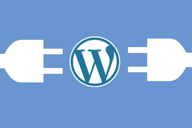 Установлю и настрою Wordpress и добавлю грамотный robots.txt 1 - kwork.ru