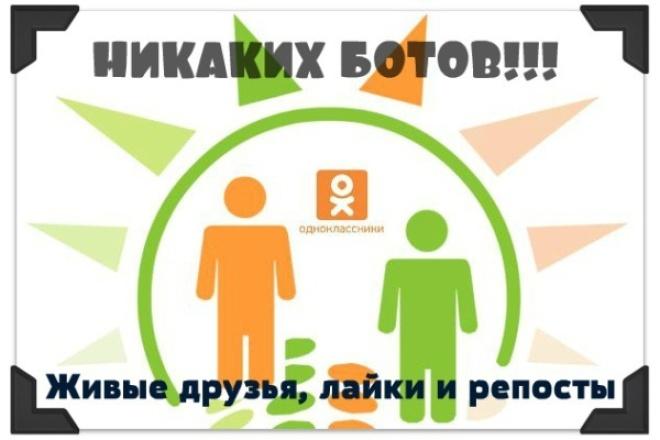 Живые друзья, подписчики, классы, репосты - Ok.ru 1 - kwork.ru