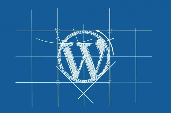 Размещу статьи на CMS WordPress 1 - kwork.ru