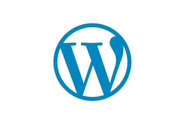 Работа с WordpressДоработка сайтов<br>Установка и настройка шаблона Правка плагинов Правка верстки Размещение текстов на сайте Починка: удаление вирусов, обновление ядра и т.д.<br>
