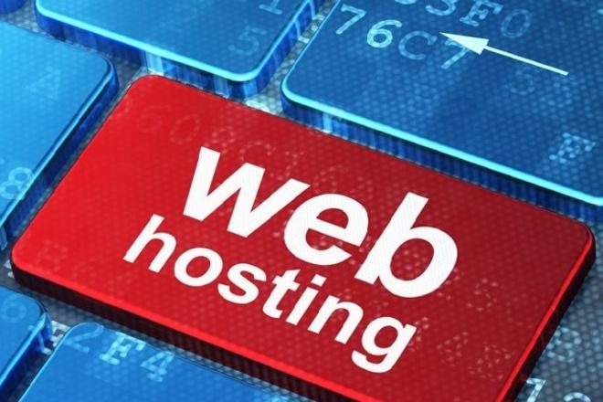 Перенос сайта Wordpress с виртуального хостинга на VPS VDS 1 - kwork.ru