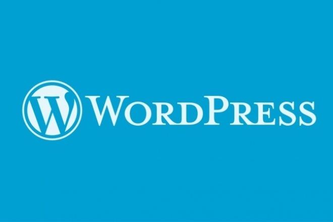 Установка WordPress +бонус (плагины) 1 - kwork.ru
