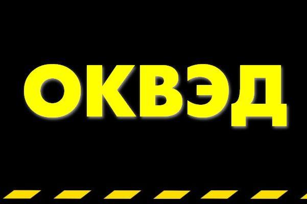 Подготовлю список кодов экономической деятельности для вашего бизнеса 1 - kwork.ru
