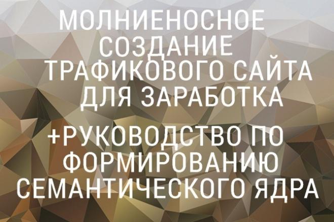 Курс А.Борисова по созданию трафиковых сайтов+семантика от Пузат 1 - kwork.ru
