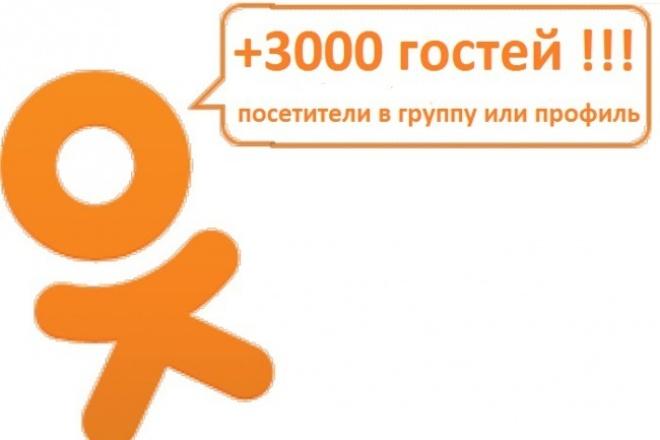 + 3000 посетителей 1 - kwork.ru