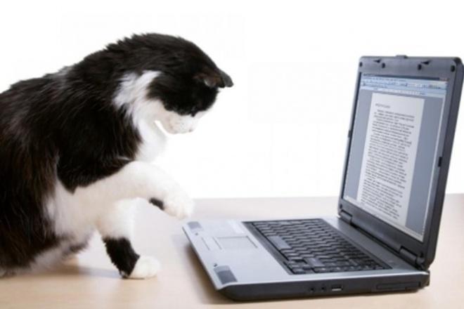 Напишу текст в doc файл с картинок 1 - kwork.ru