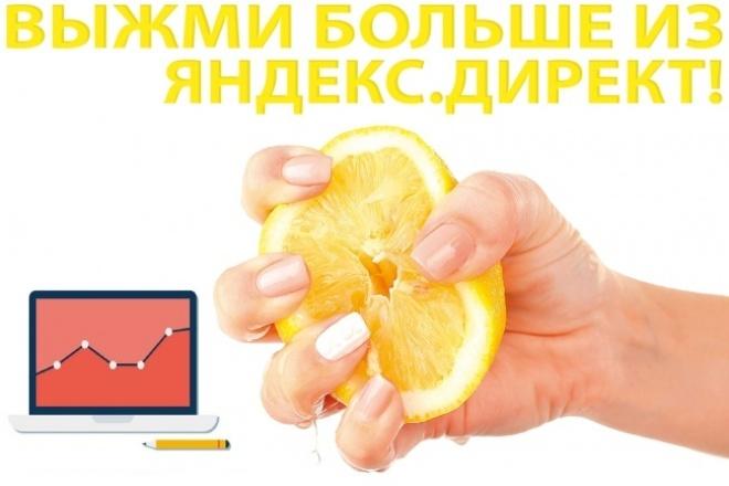 Консультация и аудит существующего Яндекс.Директ, прогноз ROI и CPC 1 - kwork.ru