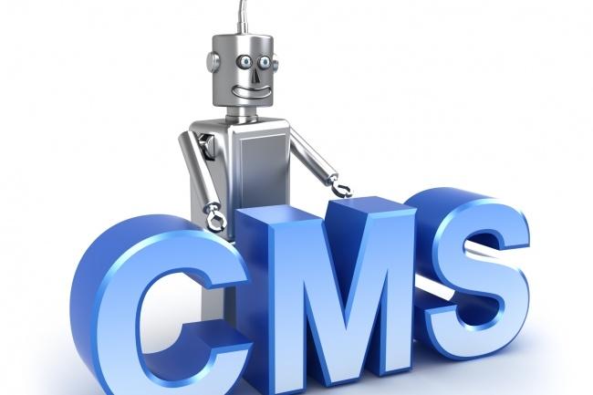 Установлю CMS на ваш хостинг 1 - kwork.ru