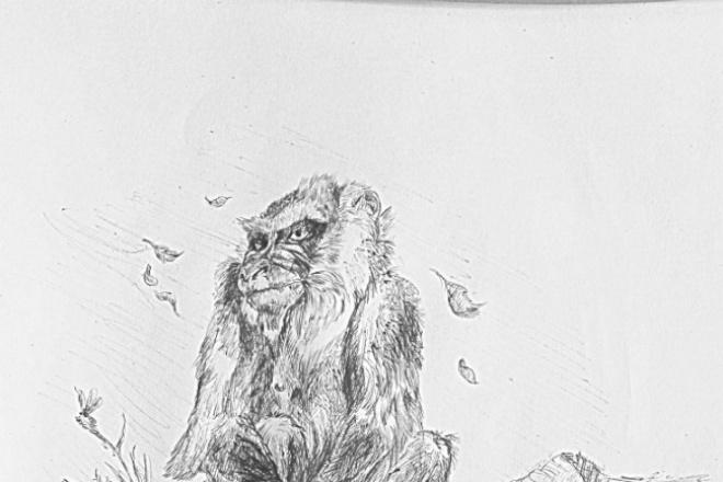 Сделаю иллюстрациюИллюстрации и рисунки<br>Выполню иллюстрацию к детской книге, дизайну обложки. Рисунок может быть в компьютерной обработке или в традиционной технике, карандаш, акварель, смешанная техника.<br>