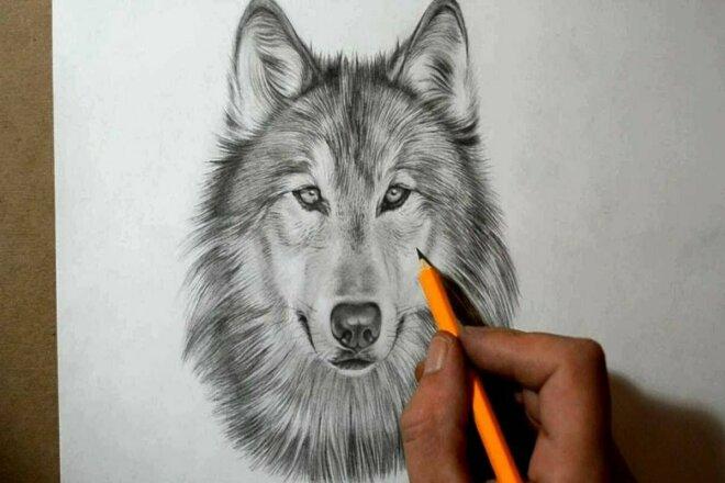 Нарисую для вас рисунок или эскиз 1 - kwork.ru