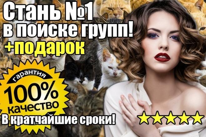 1800 участников ВКонтакте + определим позицию группы в поиске 1 - kwork.ru