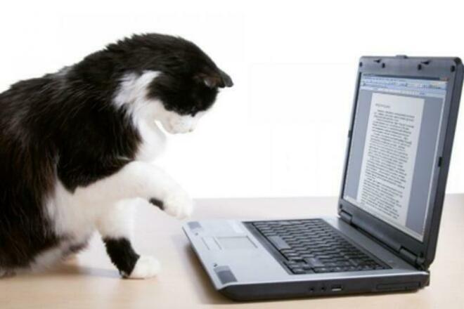 Напишу текст - быстро,грамотноНабор текста<br>Грамотный набор текста с фотографий, сканов,рукописей,аудио и видеофрагментов. Учту ваши пожелания к оформлению. Выполню работу качественно и в кратчайшие сроки.<br>