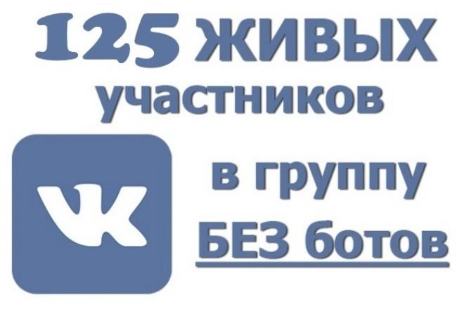 Привлеку за 24 часа 125 Живых Подписчиков в Группу ВК! Никаких ботов 1 - kwork.ru