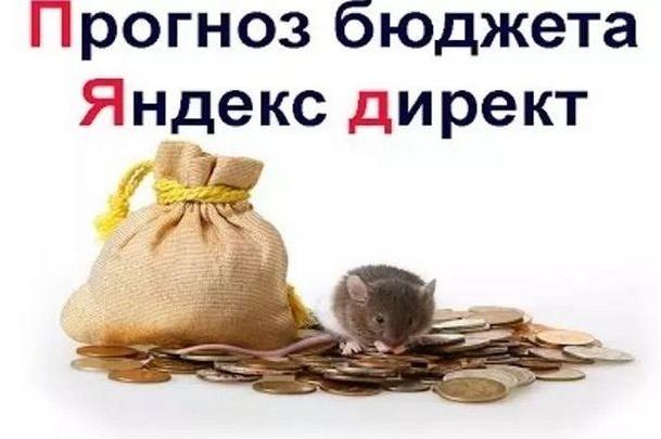 Прогноз бюджета для рекламной кампании в Яндекс Директ 1 - kwork.ru