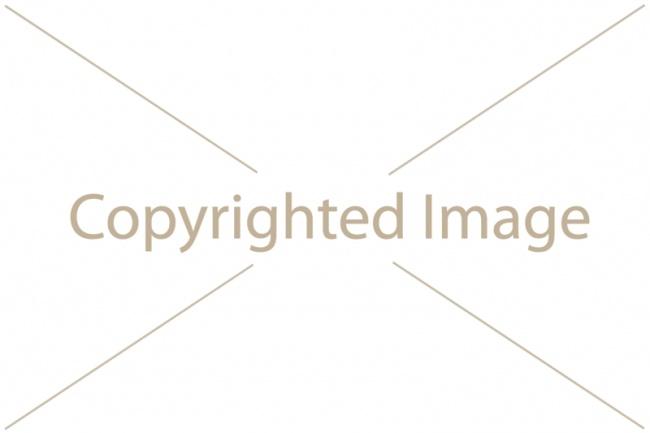 Водяной знак на 100 штОбработка изображений<br>Нанесу водяной знак на ваши изображения. Сделаю, нанесу водяной знак Вашей фирмы, предприятия, мероприятия и т. п. на изображении. На 100 изображений. ВЗ может быть текстом, картинкой, логотип, любого цвета формы и размера. Присылайте Ваши примеры. Условия: Все фото одного размера и в одной папке.<br>