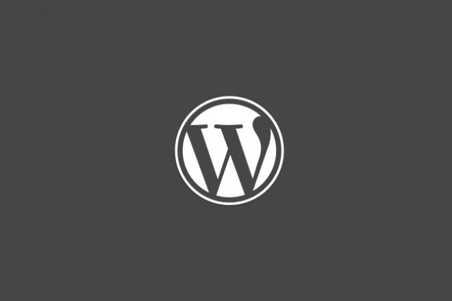 Грамотная настройка WordPress + Шаблон 1 - kwork.ru