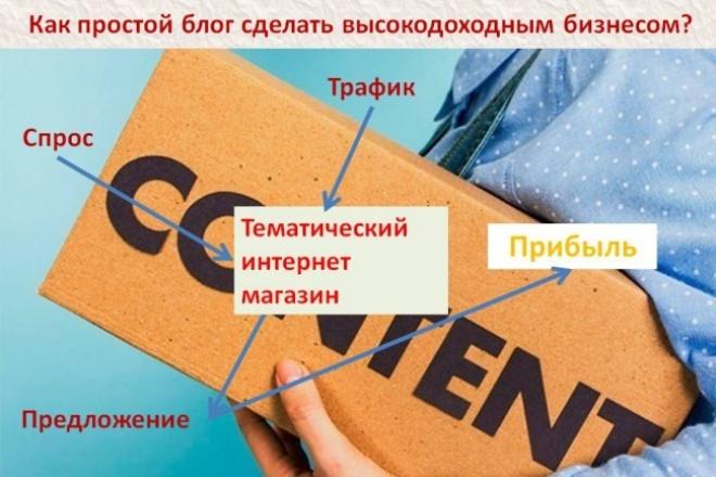 консультации по созданию тематического интернет магазина 1 - kwork.ru