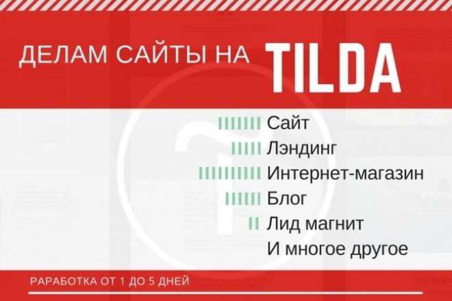 Сделаю современный, адаптивный,  сайт или лендинг , на Tilda под ключ 1 - kwork.ru