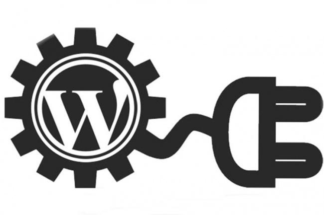поправлю, настрою, ускорю сайт на WP 1 - kwork.ru