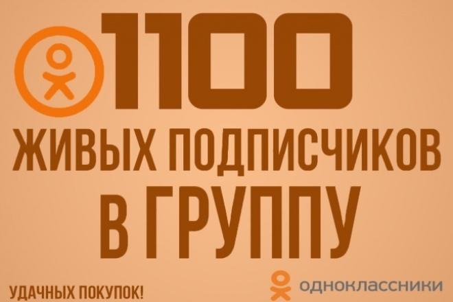1100 живых подписчиков в группу Одноклассники 1 - kwork.ru