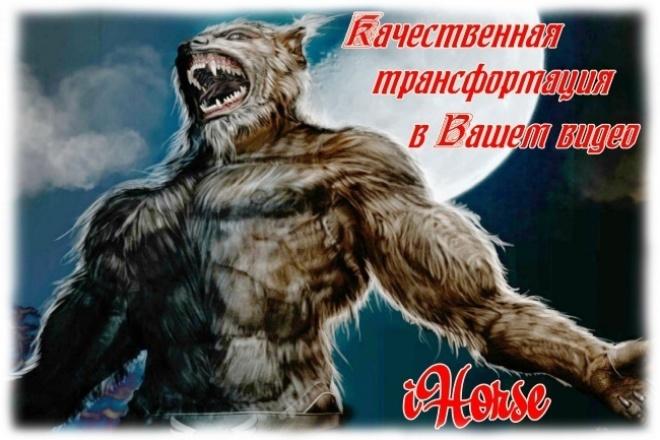 выполню трансформацию  в Вашем видео 1 - kwork.ru