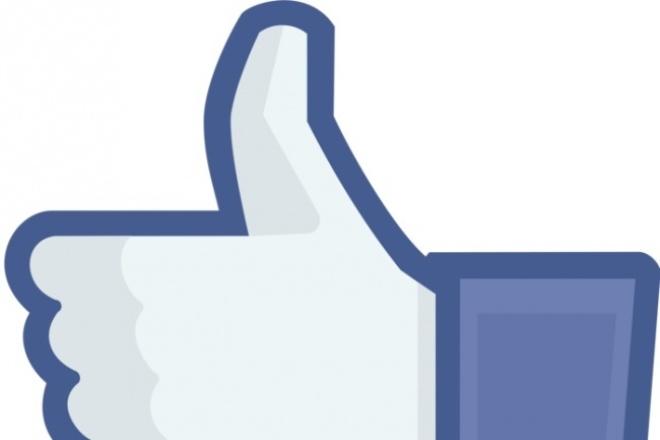 Огромное количество лайков (250) за 1 день  в Facebook 1 - kwork.ru