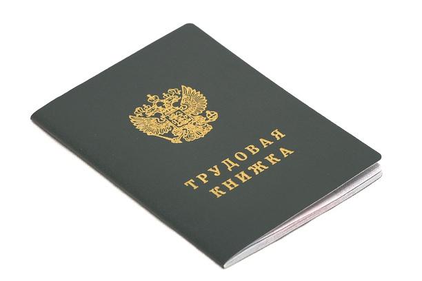 Поработаю Вашим кадровиком 1 - kwork.ru