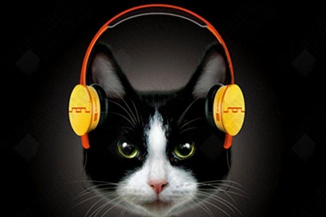 Транскрибация  аудиофайлов 1 - kwork.ru
