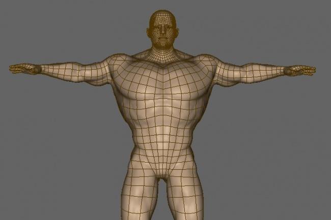 Топология персонажаФлеш и 3D-графика<br>Добрый день, сделаю для вас топологию персонажа в программе Topogun. Персонаж может быть любой, главное чтобы он не был с высокой детализацией.<br>