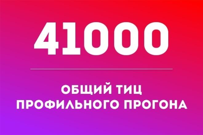 41000 общий ТИЦ профильного прогона 1 - kwork.ru