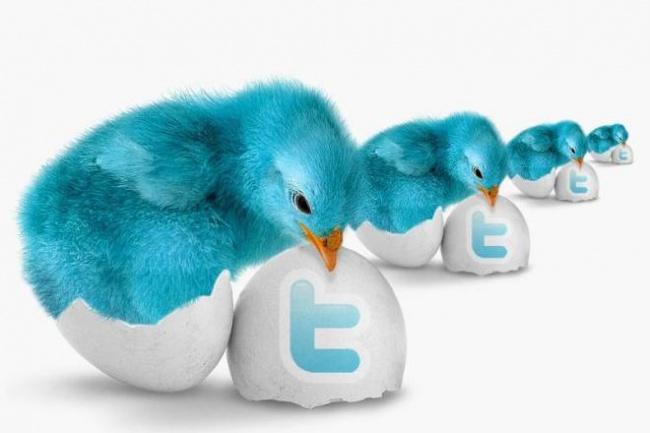 200 ссылок с твиттера, улучшение индексации+привлечение посетителей 1 - kwork.ru