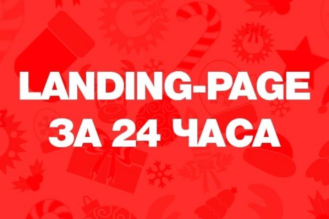 Разработка Landing-Page за 24 часа 1 - kwork.ru