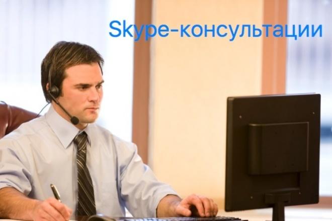 Проведу скайп-консультацию по продвижению проекта в Интернет 1 - kwork.ru